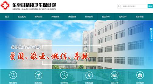 乐至县精神卫生保健院-新万博manbetx官网登录网络建设